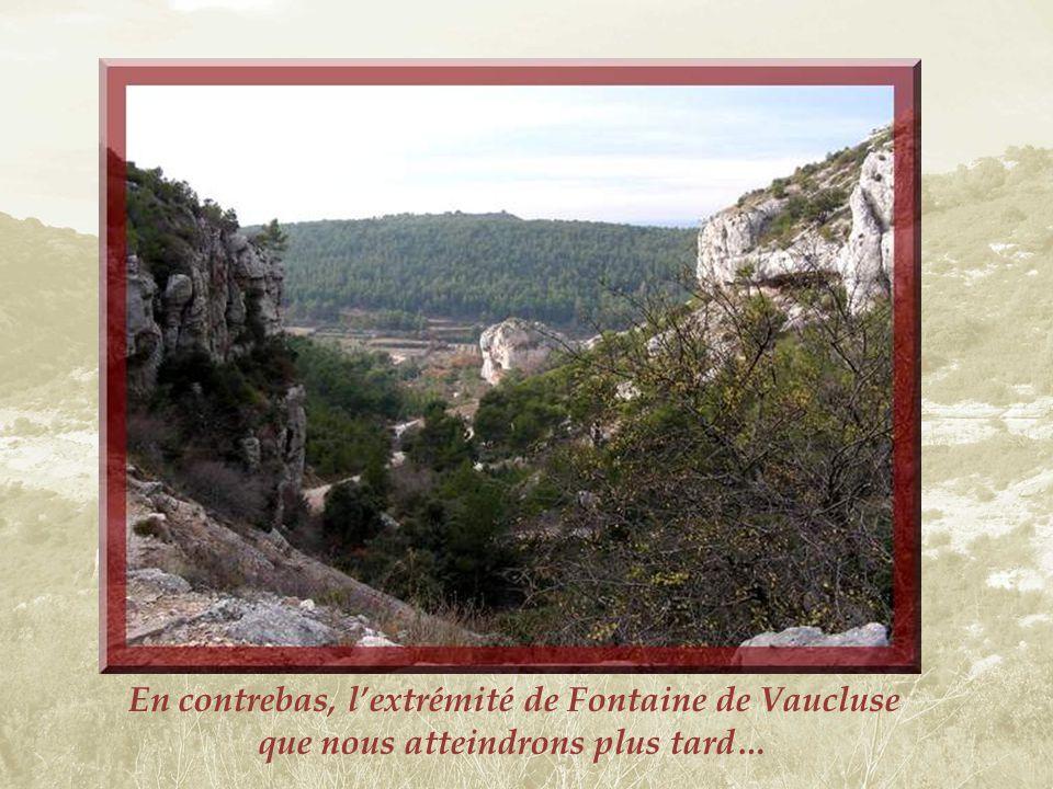 De pittoresques rochers jalonnent la promenade à travers une végétation très basse permettant une vue sur lensemble du paysage.
