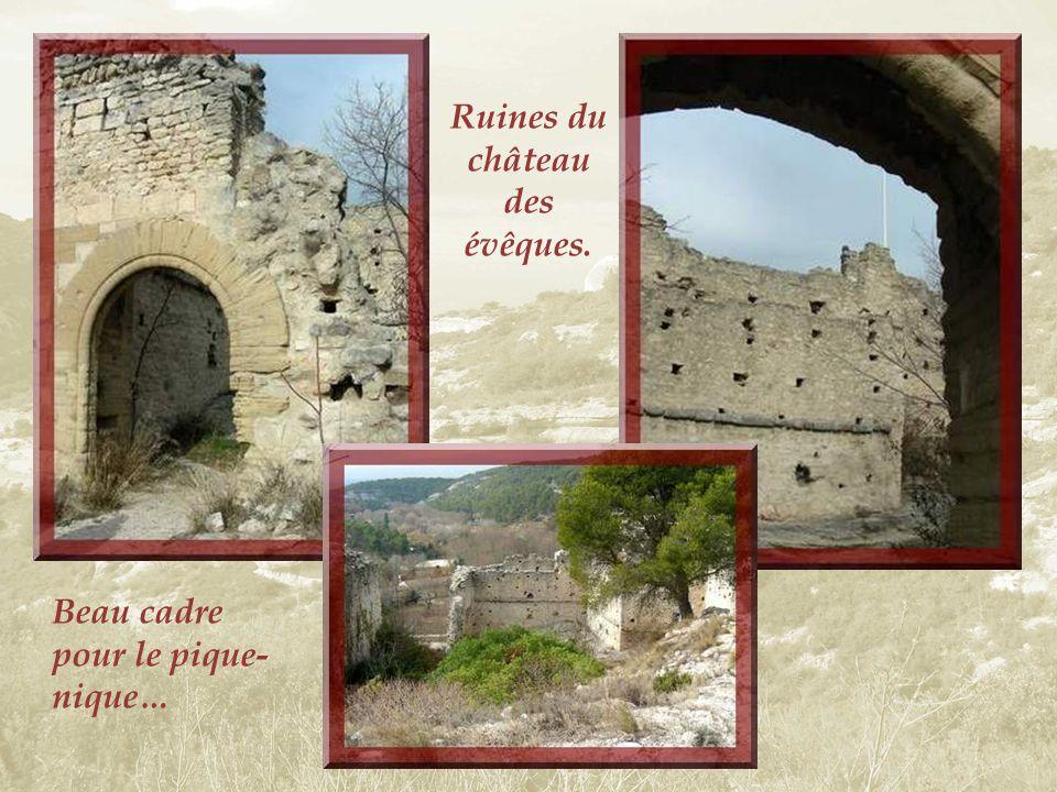Perché sur une falaise abrupte, les ruines dun vieux château dominent Fontaine de Vaucluse. Ce château fut vraisemblablement construit vers 1030. Il a