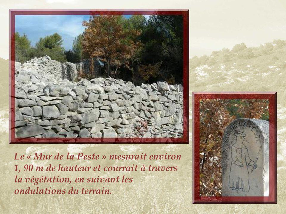 Nous arrivons maintenant vers un témoin particulier. Il sagit dun long mur de pierre sèche qui fut construit sur 25 km entre mars et juillet 1721, pou