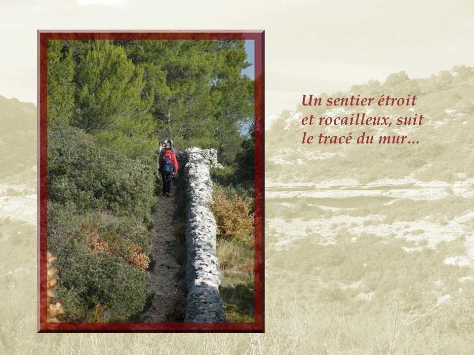 Un petit sentier caillouteux, en pente raide et étroit, nous permet de descendre au village et darriver à la Fontaine.