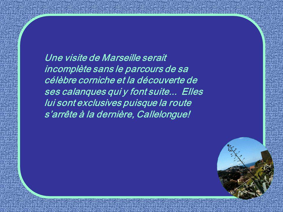 Spécialité marseillaise au même titre que la bouillabaisse, la navette est un biscuit de forme allongée, parfumé à leau de fleurs dorangers.