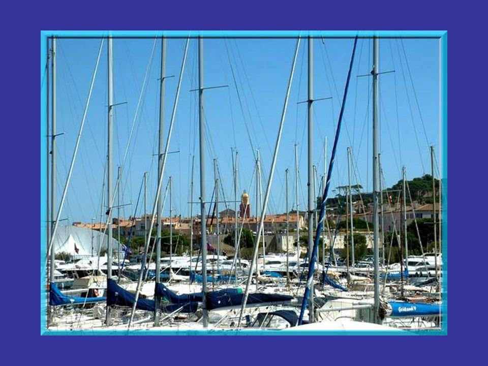 A « Saint-Trop », dans cet espace grand comme un mouchoir de poche, se retrouvent les yachts les plus chics, des plus petits au plus grands. Au début