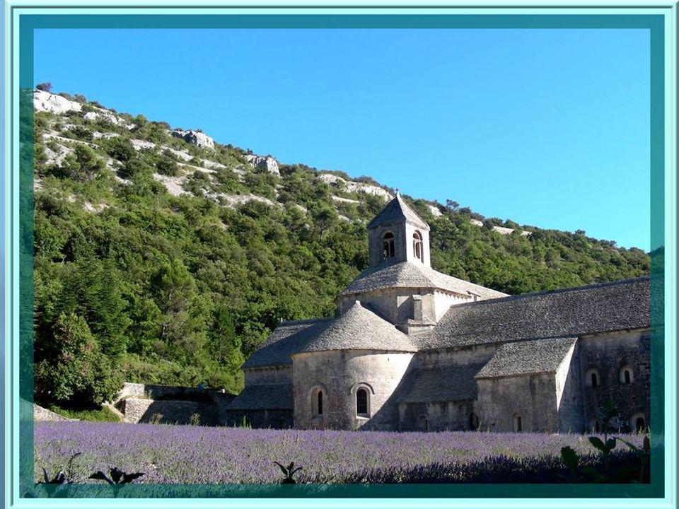 Fondée en 1468, labbaye cistercienne de Sénanque est devenue dépendante de labbaye de Lérins et elle est toujours en activité.
