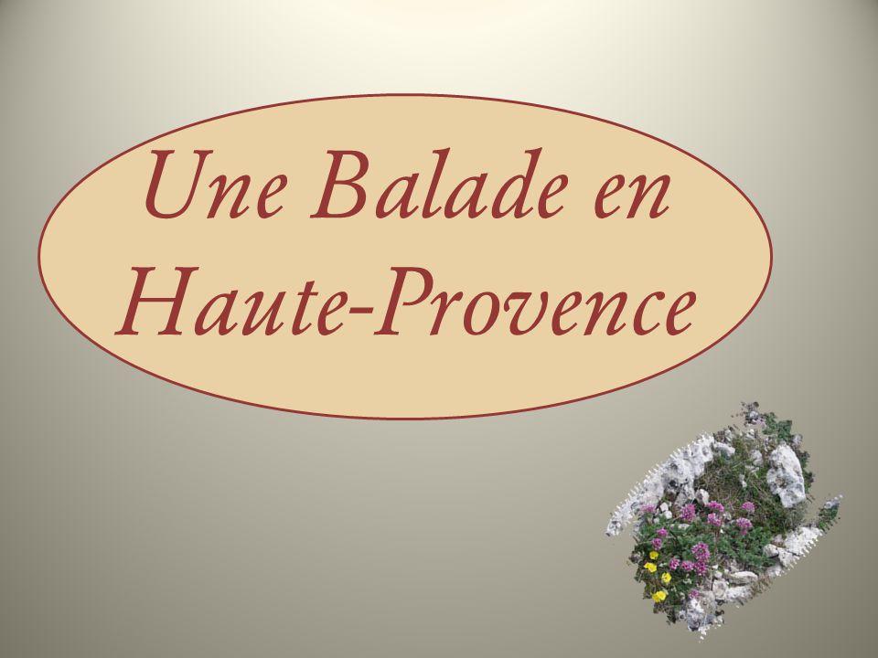 Une Balade en Haute-Provence