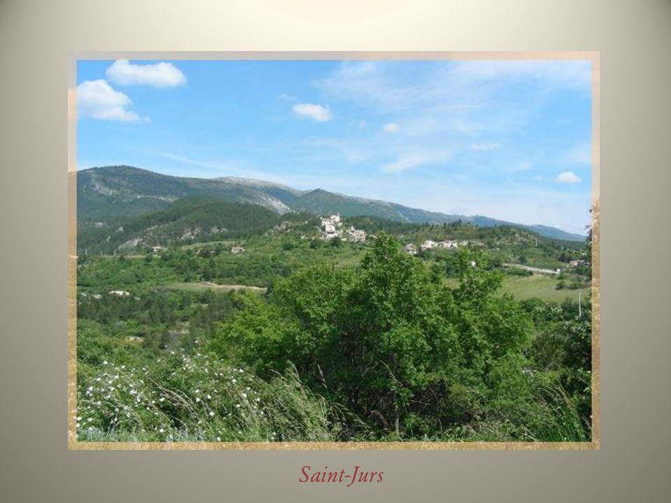 On longe la vieille ville par de typiques cours provençaux bordés de platanes, qui ont remplacé les remparts…
