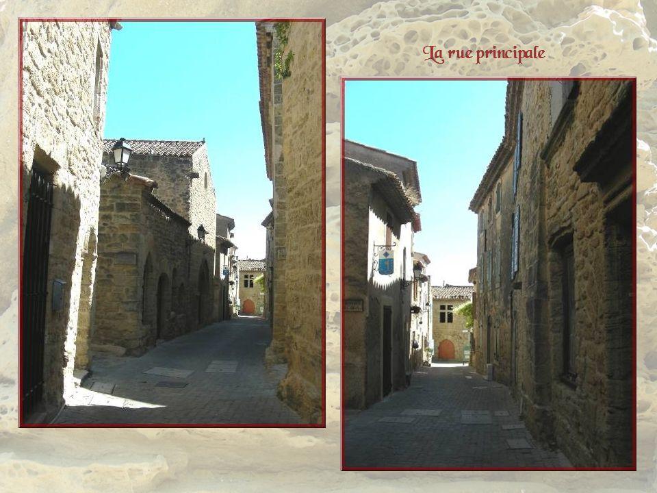Les remparts, comme le château et la porte, remontent au XIe siècle. Il reste peu de choses du château. Un passage voûté sous croisé dogives débouche