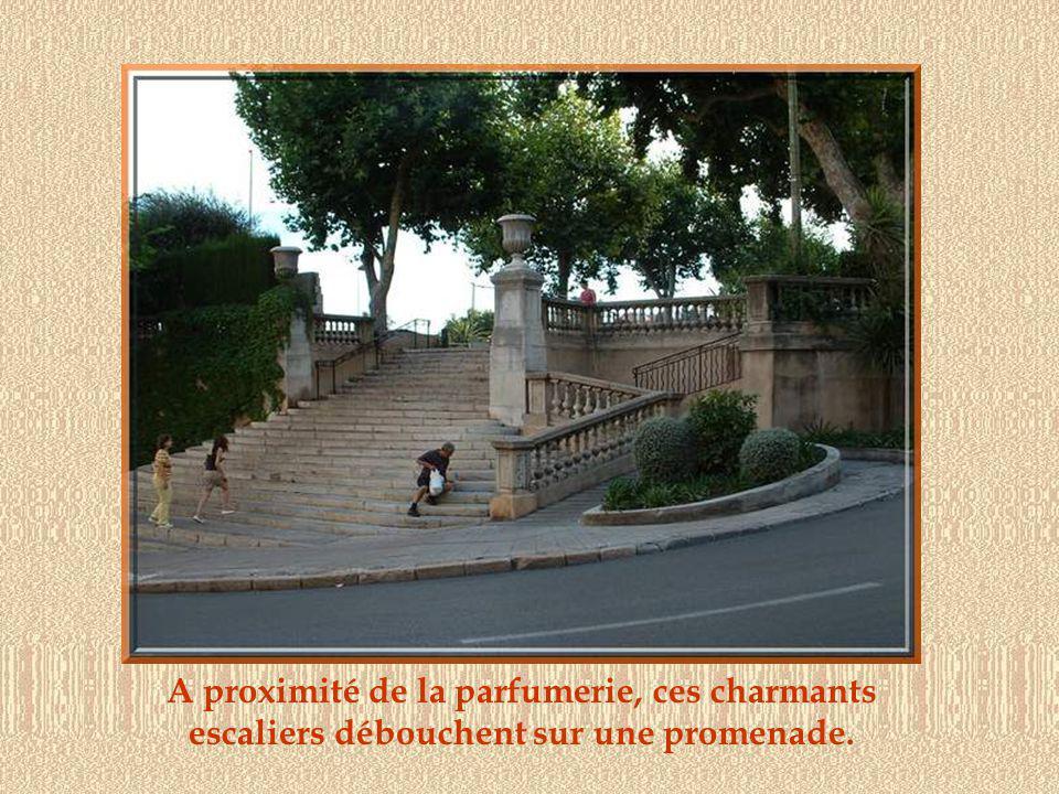 A proximité de la parfumerie, ces charmants escaliers débouchent sur une promenade.