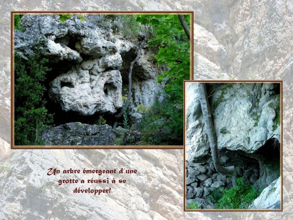 De nombreuses baumes ou grottes en travertin ont offert des abris à lhomme depuis un très grand nombre dannées, probablement dès le Ve siècle.