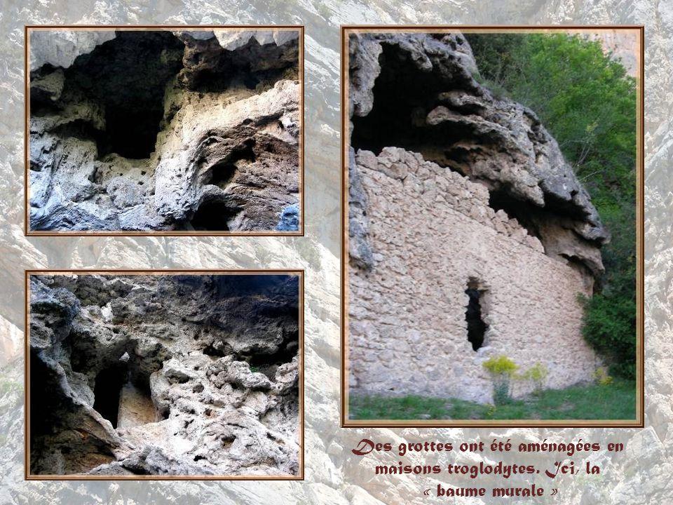La multitude de sources qui prennent naissance sur ce site est à lorigine, par ses dépôts de calcaire, de la roche appelée travertin ou tuf.