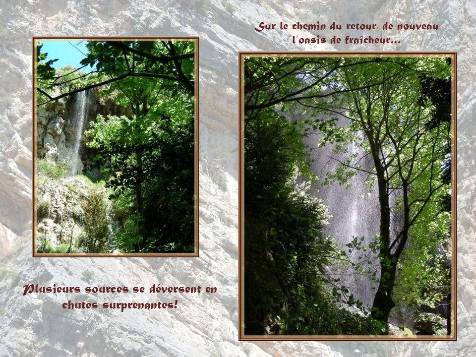 Le Verdon aux eaux si vertes et la route qui le surplombe, reliant Moustiers Sainte-Marie à La Palud.