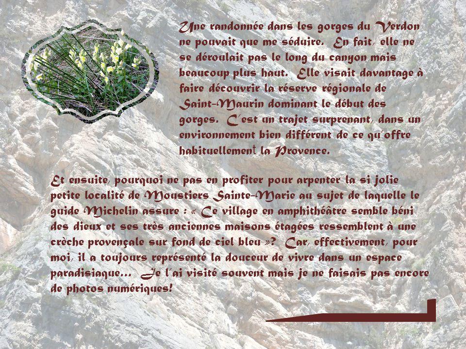 Moustiers Sainte-Marie et le Verdon