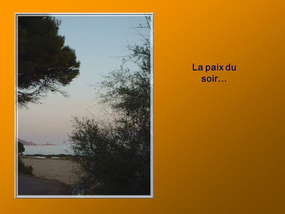 En fin de jour, quel plaisir de se promener, presque solitaire, en bord de mer à Boulouris!