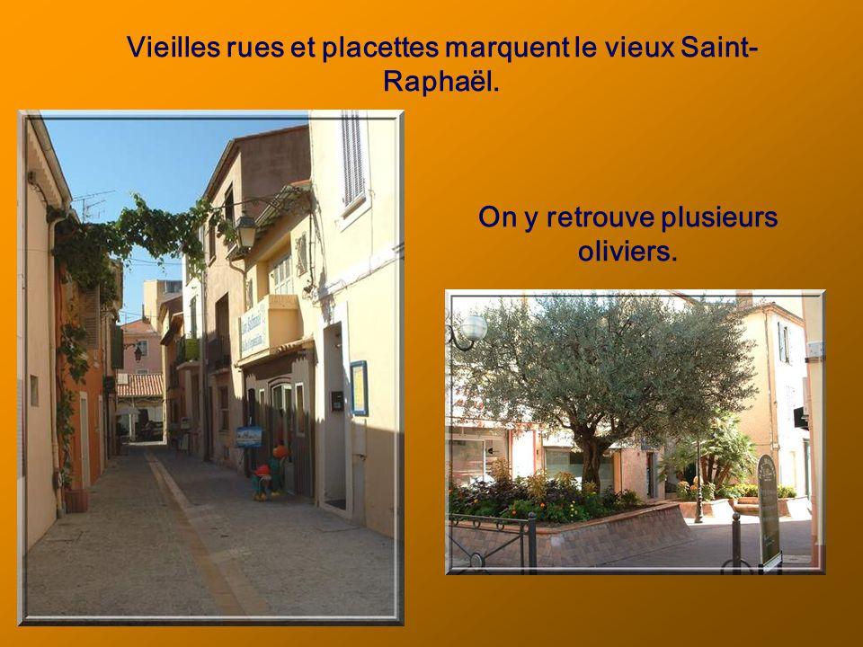 Vieilles rues et placettes marquent le vieux Saint- Raphaël. On y retrouve plusieurs oliviers.