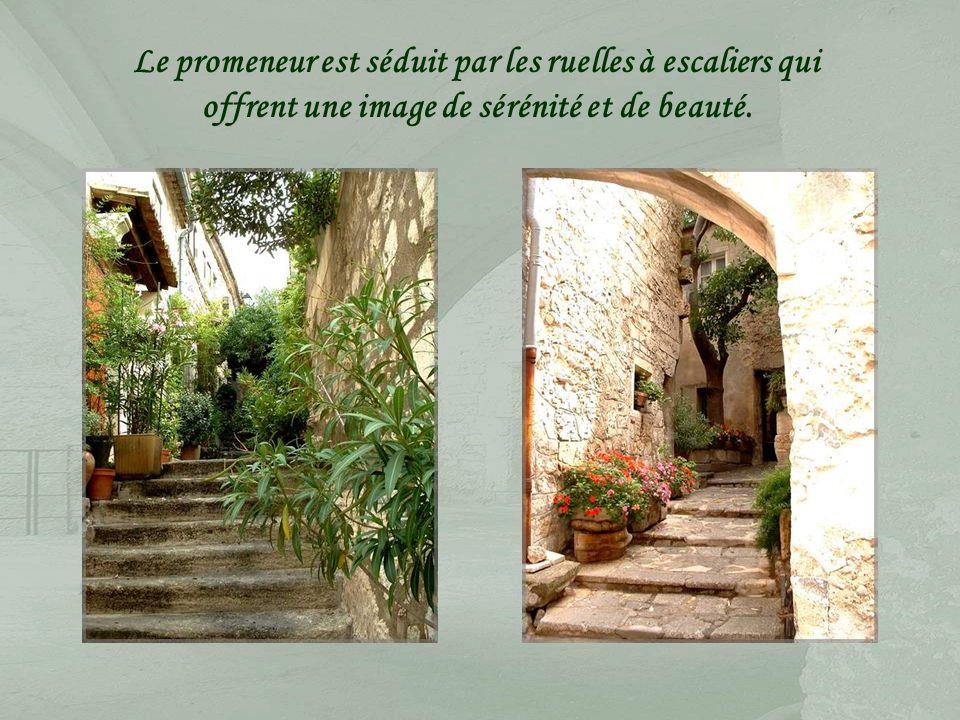 Bâus est un terme provençal qui signifie « rocher escarpé ».