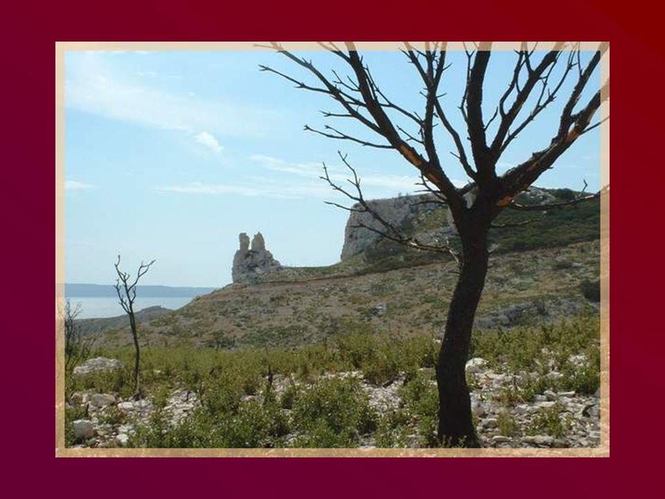 Partant dAix-en-Provence, nous nous dirigeons vers la zone de rochers qui sinstallent progressivement à lapproche de Lançon.