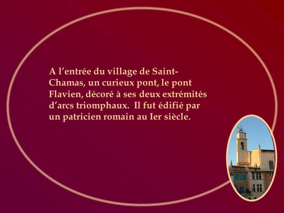 A lentrée du village de Saint- Chamas, un curieux pont, le pont Flavien, décoré à ses deux extrémités darcs triomphaux.