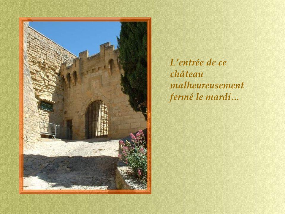Construit au XIIe siècle, le château est à la fois une forteresse et une maison de plaisance qui fut largement remaniée au XVIIe et XVIIIe siècle.
