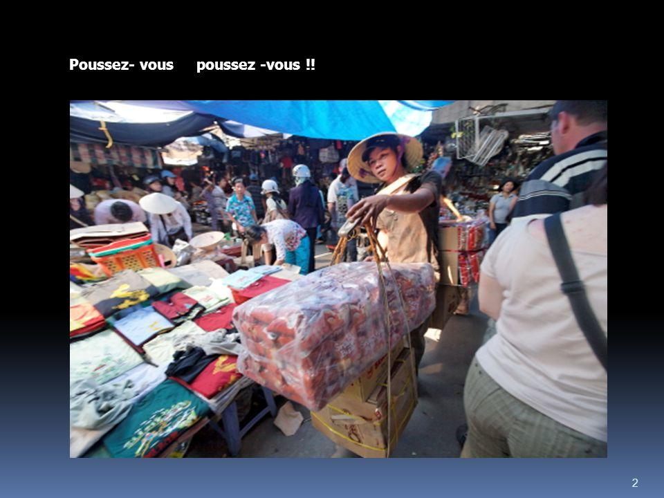 1 Les Insolites du Vietnam _II_ Ph. Blondel