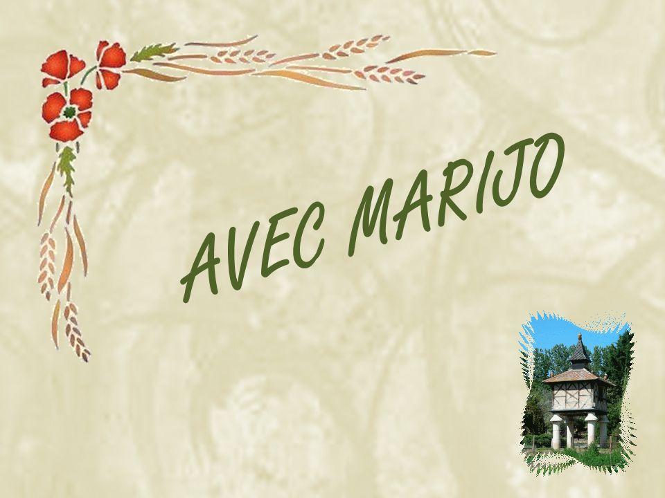 A Sauveterre se termine la tournée proposée par le Comité départemental du Tourisme du Tarn.