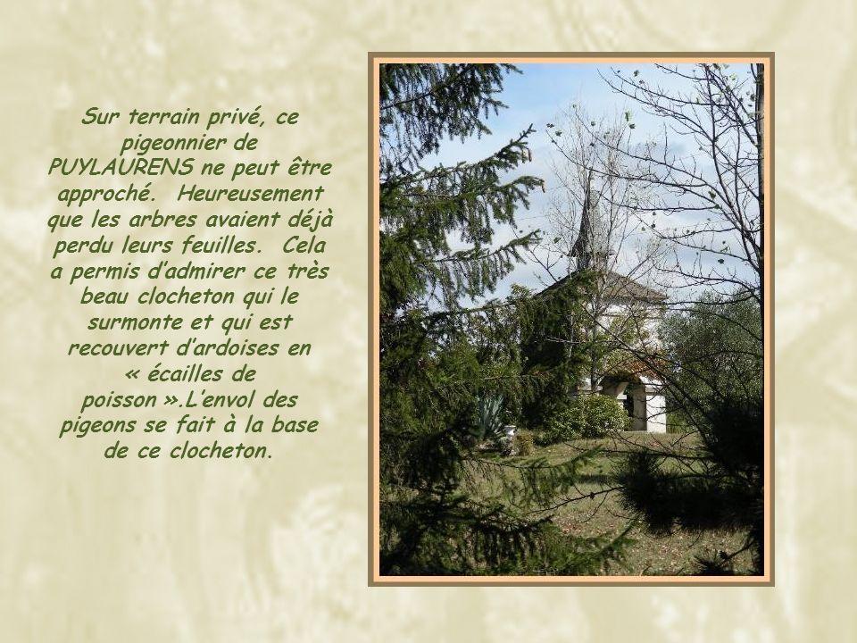 Celui-ci, à ST-PAUL CAP DE JOUX, je laime particulièrement… Il repose sur des piliers très massifs ornés des traditionnels « capels et chapiteaux ».