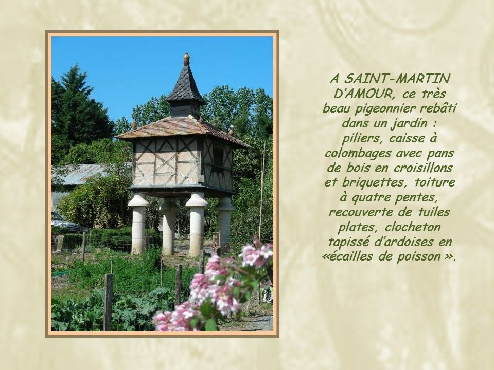 A SAURS, ces deux pigeonniers de type « Pied de Mulet », lun sur huit piliers et lautre sur arcades.