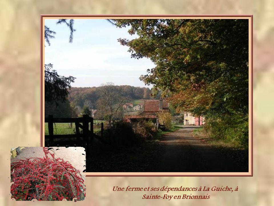 Le Brionnais comportait un grand nombre de propriétaires terriens aisés, ce qui explique la présence de belles maisons de maîtres, voire même de jolis