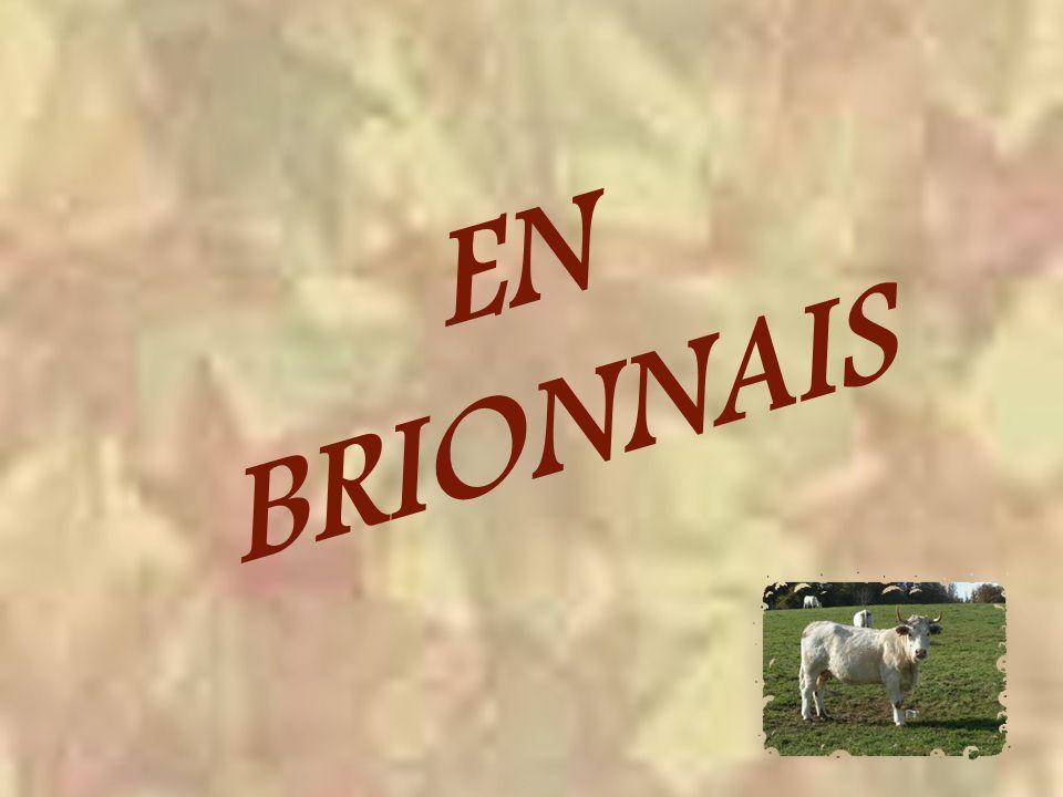 Perché, lui aussi, le chef-lieu de canton, Semur-en-Brionnais.