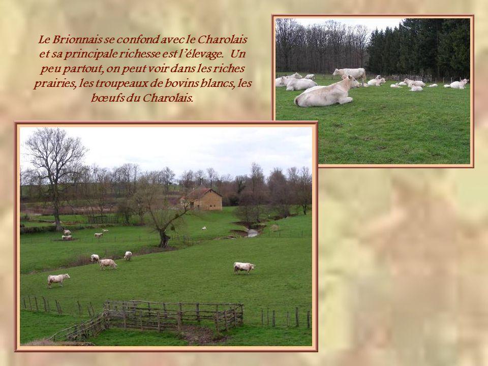 Sur une colline face à celle de léglise dIguerande, ce monument, dédié à Notre-Dame de la Paix; domine le village et la vallée de la Loire. Il se voit
