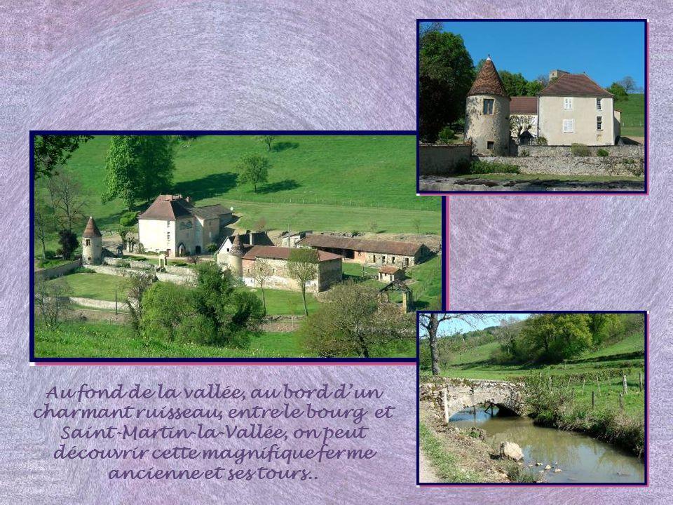 Au fond de la vallée, au bord dun charmant ruisseau, entre le bourg et Saint-Martin-la-Vallée, on peut découvrir cette magnifique ferme ancienne et ses tours..
