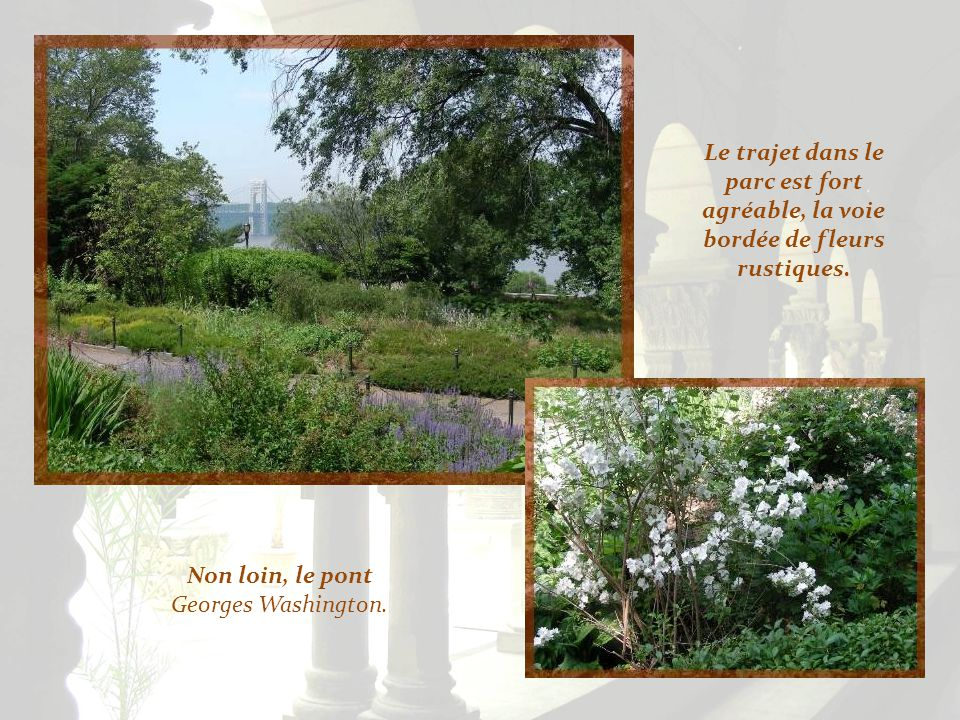 On y cultive un jardin dherbes potagères et médicinales qui contient plus de 250 plantes que lon trouvait au Moyen Âge.