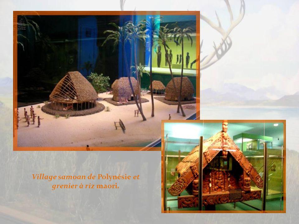 Parce que Margaret Meazd a étudié les populations de Bali, proche de lAustralie, ces marionnettes indonésiennes sont présentées dans la même salle.