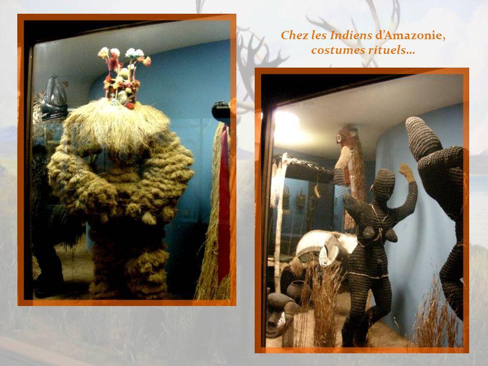 Objets utilitaires provenant de chez les Indiens dAmazonie.