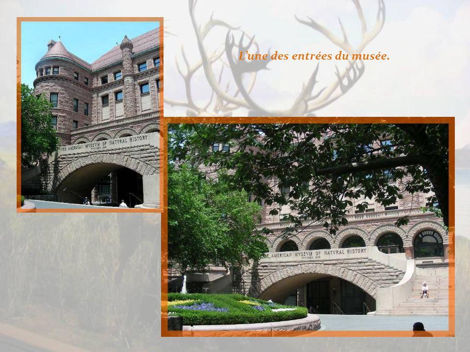Cest lun des plus vastes musées de la ville de New York.