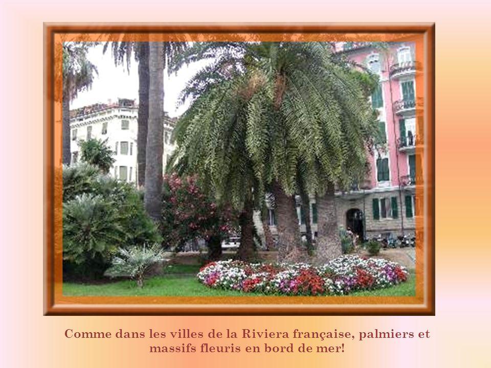 Comme dans les villes de la Riviera française, palmiers et massifs fleuris en bord de mer!