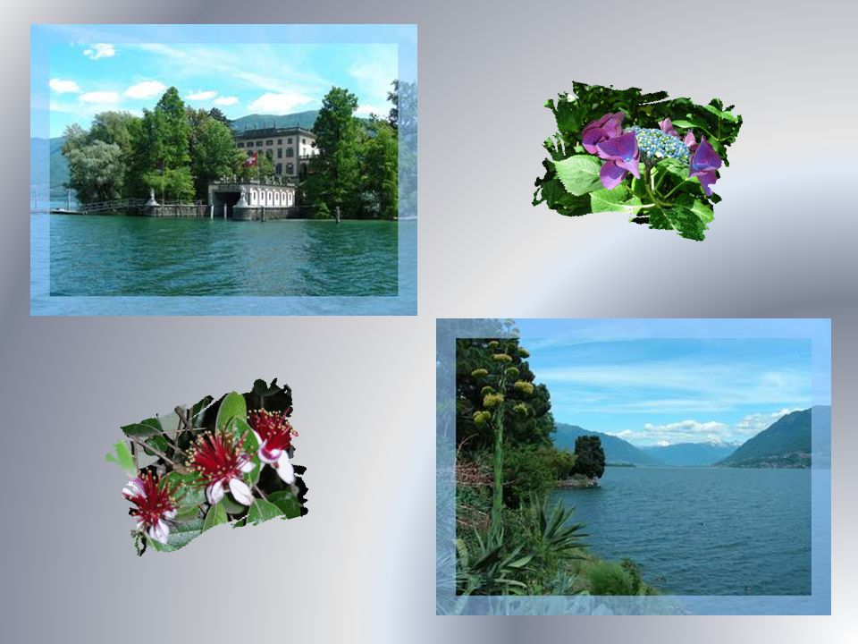 Lîle de Brissago, dont une navette assure laccès, offre un agréable jardin botanique qui héberge un grand assortiment de plantes et permet des vues très belles sur le lac.