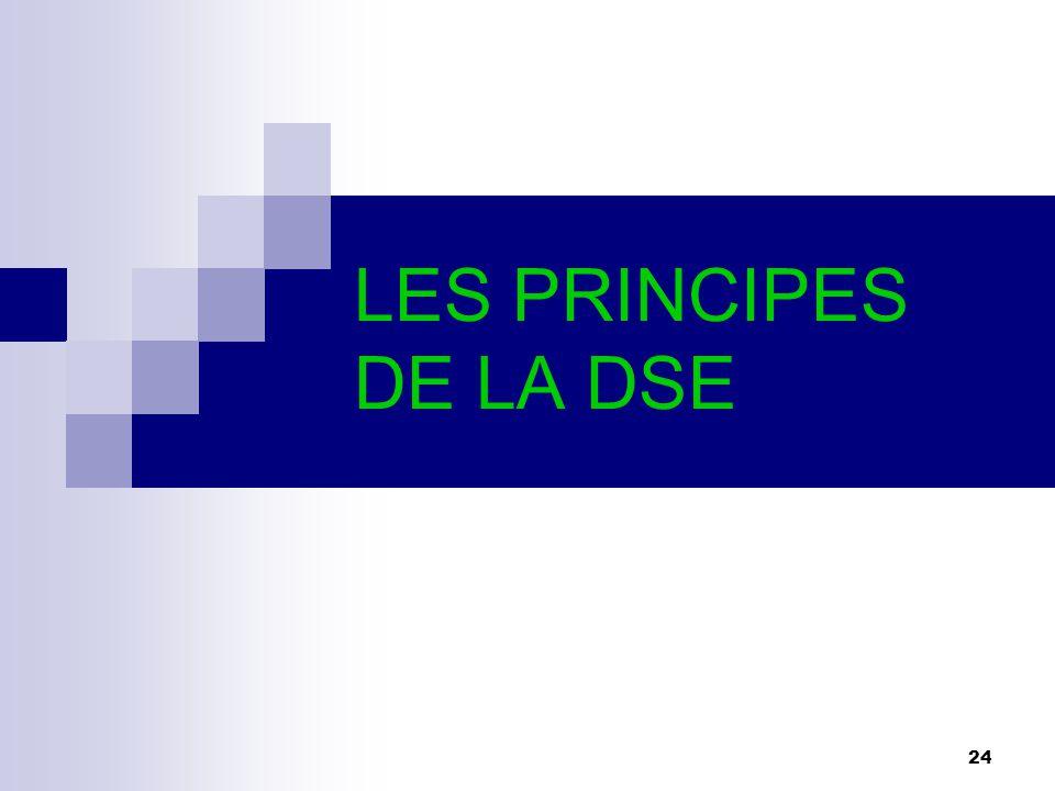 24 LES PRINCIPES DE LA DSE