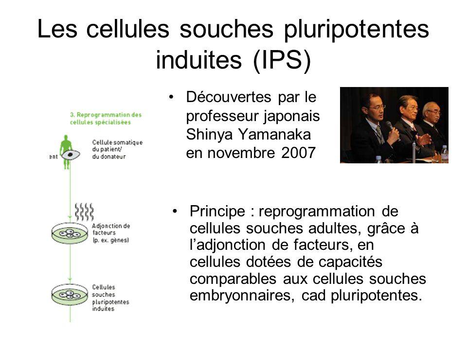 Les cellules souches pluripotentes induites (IPS) Découvertes par le professeur japonais Shinya Yamanaka en novembre 2007 Principe : reprogrammation d