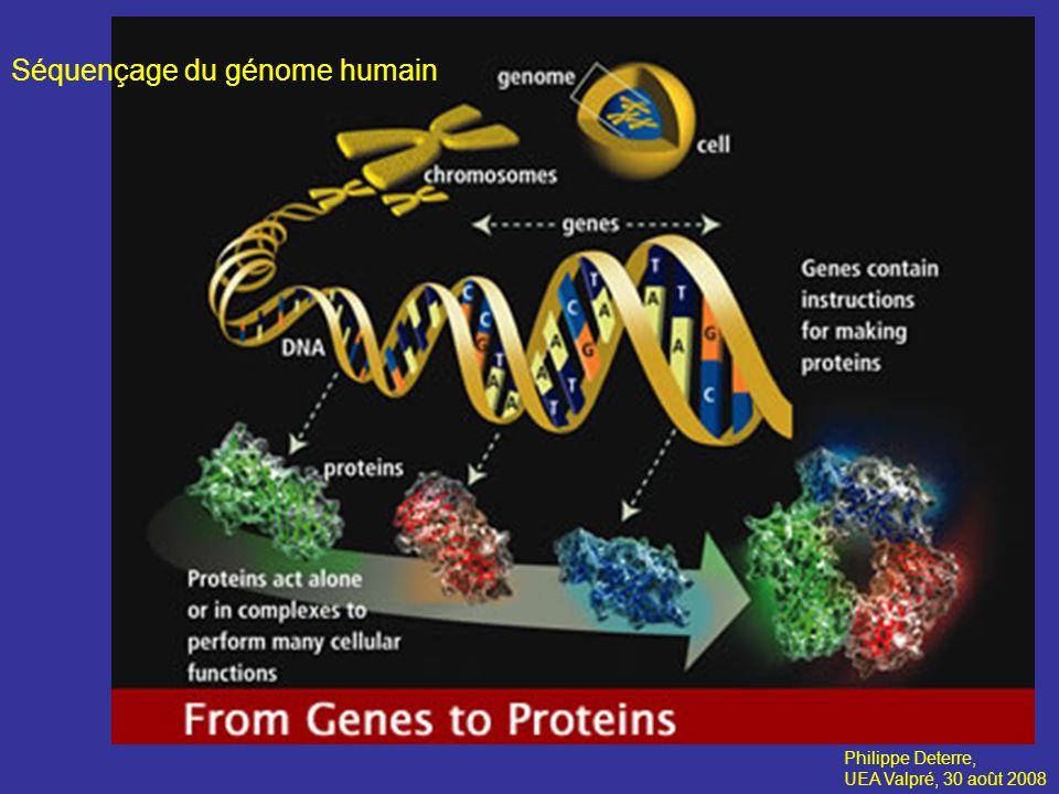 Séquençage du génome humain