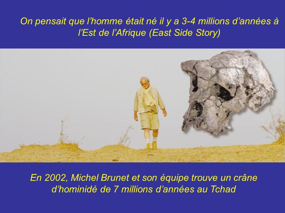 On pensait que lhomme était né il y a 3-4 millions dannées à lEst de lAfrique (East Side Story) En 2002, Michel Brunet et son équipe trouve un crâne dhominidé de 7 millions dannées au Tchad