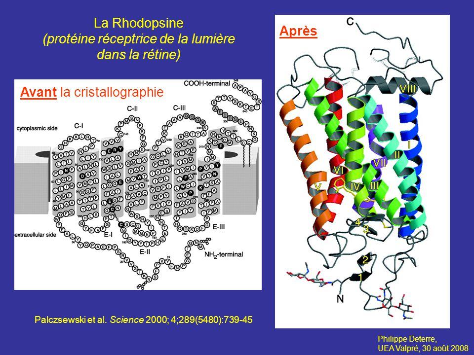 Philippe Deterre, UEA Valpré, 30 août 2008 La fluorescence cellulaire Combadière et al.