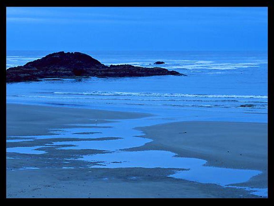 Merci pour la forêt. Par son silence, elle élève mon âme. Merci pour leau de la mer, Ses reflets, ses vagues, ses murmures.