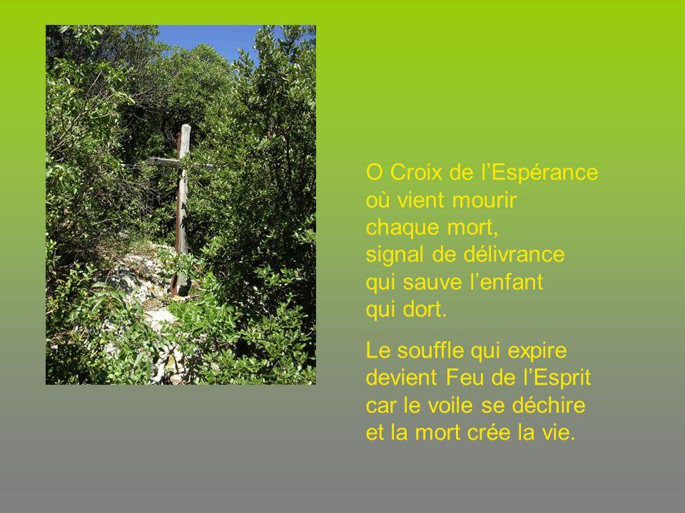 O Croix de lEspérance où vient mourir chaque mort, signal de délivrance qui sauve lenfant qui dort.