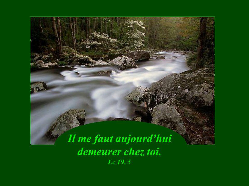 Il réconforte ceux qui ont perdu espérance. Ecc 17, 24