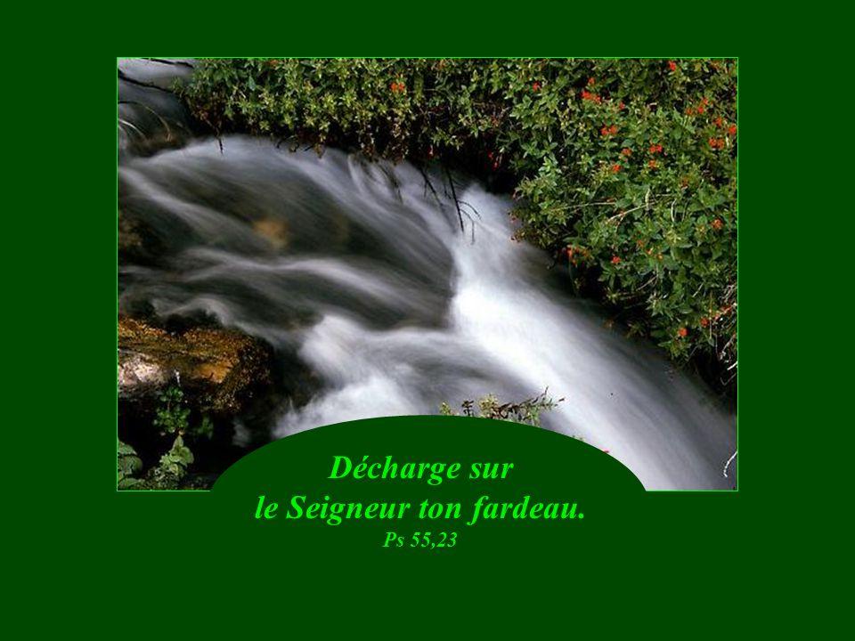 Heureux les miséricordieux, ils obtiendront miséricorde. Mt 5. 7
