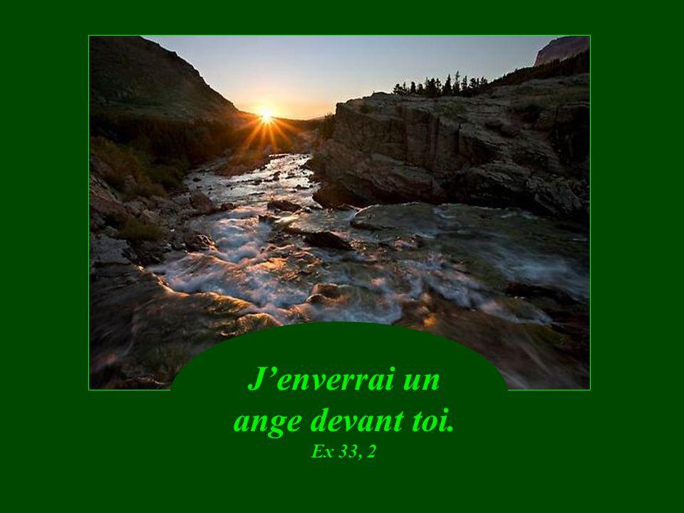Décharge sur le Seigneur ton fardeau. Ps 55,23