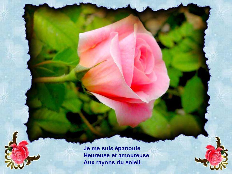 « À laurore je suis née, Baptisée de rosée.