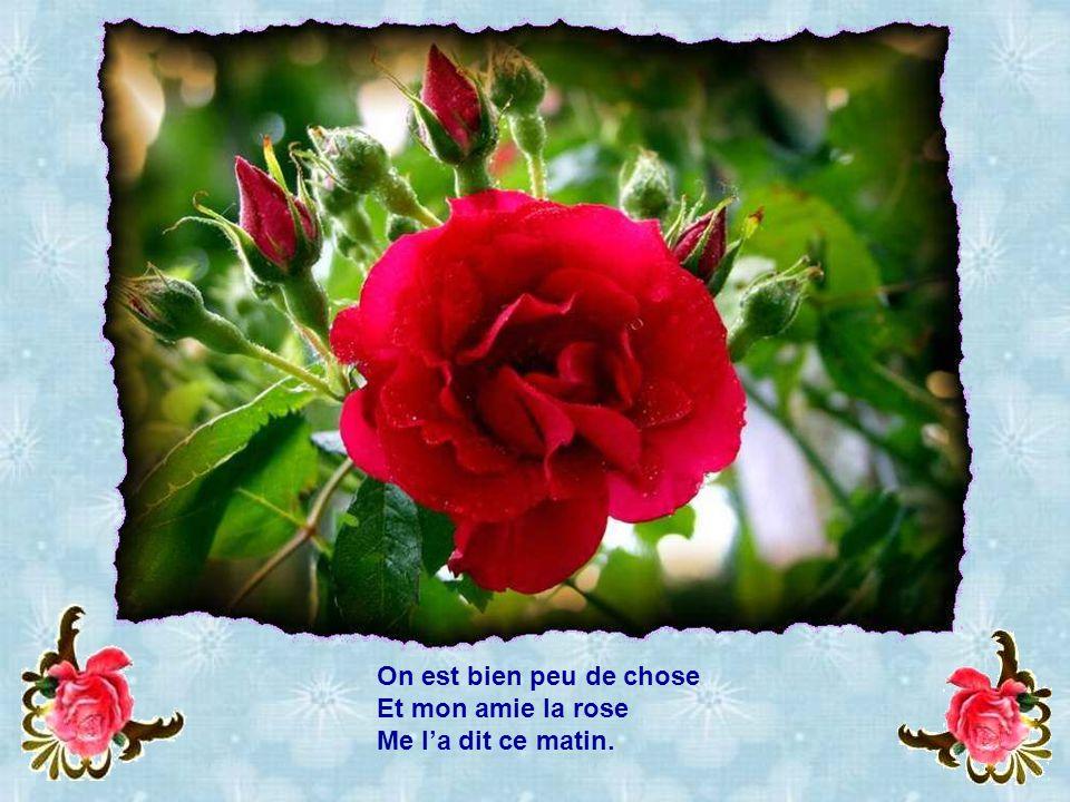Oui, jétais la plus belle Des fleurs de ton jardin ! »
