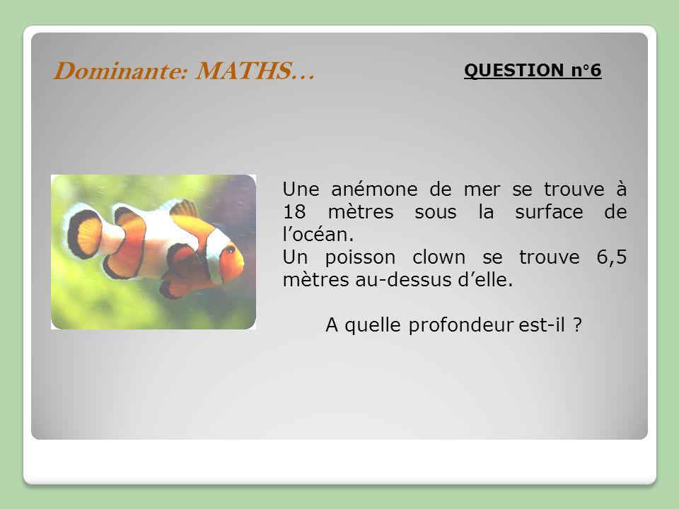 Dominante: MATHS… QUESTION n°6 Une anémone de mer se trouve à 18 mètres sous la surface de locéan. Un poisson clown se trouve 6,5 mètres au-dessus del