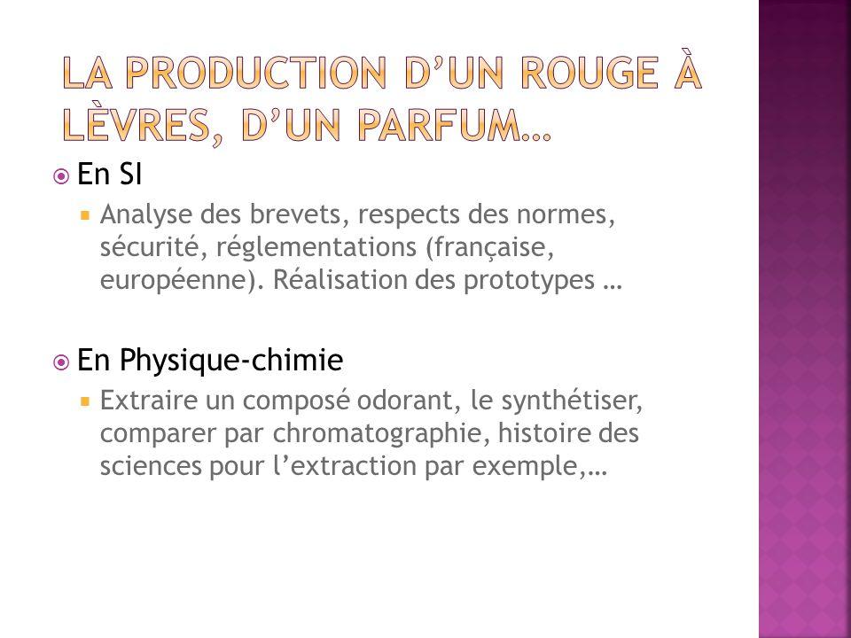 En SI Analyse des brevets, respects des normes, sécurité, réglementations (française, européenne).