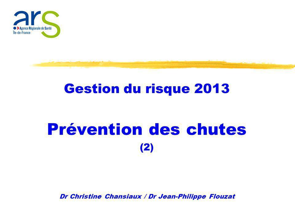 Gestion du risque 2013 Prévention des chutes (2) Dr Christine Chansiaux / Dr Jean-Philippe Flouzat